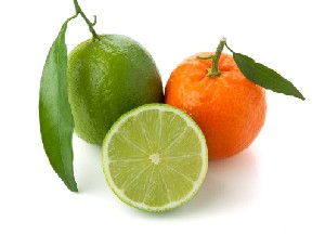 Candle Fragrance Oil - Lime,Basil & Mandarin